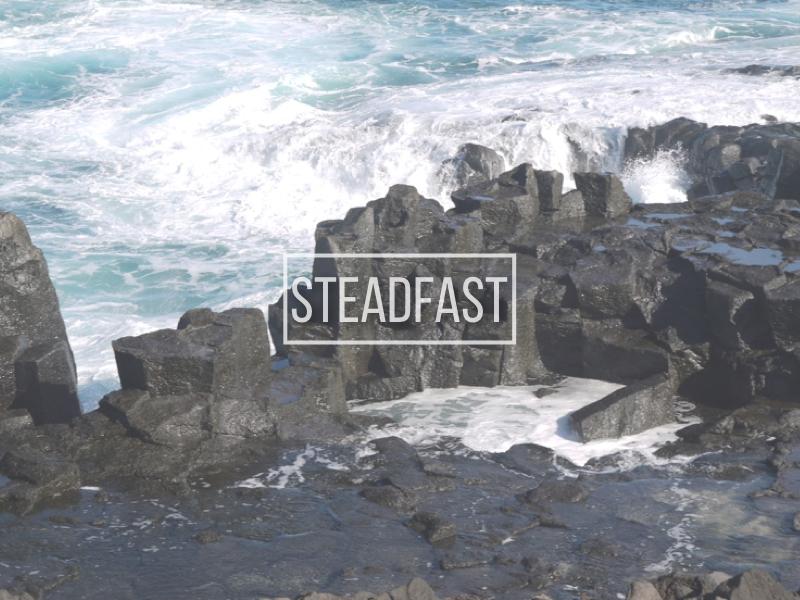 steadfast-001-001